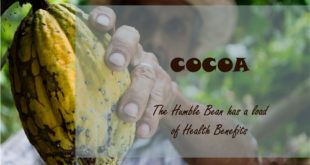 7 Awesome Benefits of Dark Chocolate [Infographic], that you should not miss